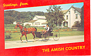 Amish Boy in Horse and Buggy, PA  Postcard n1157 (Image1)