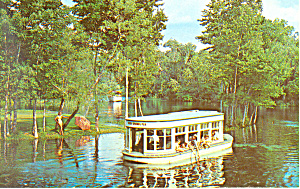 Glass Bottom Boat Silver Springs Florida Postcard n1164 (Image1)