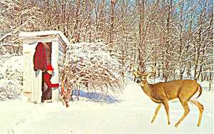 Comical Deer And Outhouse Postcard N1166