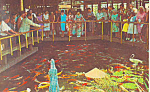 Pagoda Floating Restaurant Honolulu Hawaii n1221 (Image1)