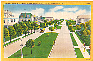 Central Avenue Looking North, Wildwood,nj Postcard N1309