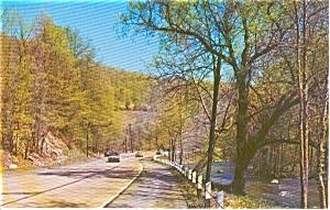 View Along the Pequest River NJ Postcard p0166 (Image1)