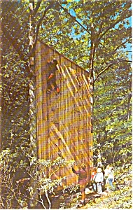 Montclair State College NJ Postcard p0360 (Image1)