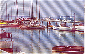 Lake Washington Marina WA Postcard (Image1)