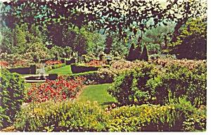 Morris Arboretum Philadelphia PA  Postcard p10180 (Image1)