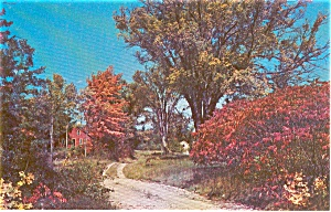 Country Home Morrisville PA Postcard (Image1)