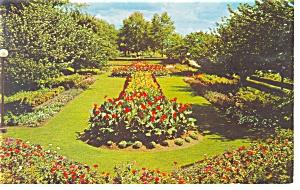 Harrisburg  PA Sunken Gardens Postcard p10322 (Image1)