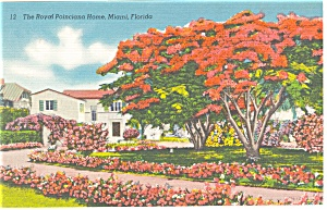 Miami Florida The Royal Poinciana Home Postcard p10388 (Image1)