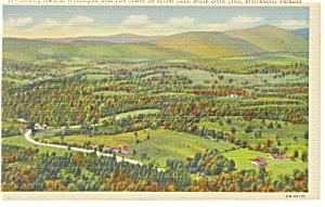 Brattleboro VT Molly Stark Trail Postcard p10590 (Image1)