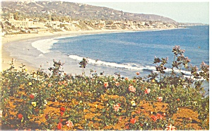 Laguna Beach Ca From Heisler Park Postcard P10605 1962