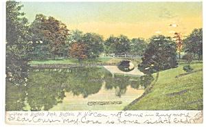 Buffalo NY View in Buffalo Park Postcard p10680 (Image1)