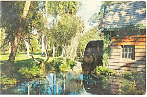 Ocala National Forest,FL, Juniper Springs Postcard 1970 (Image1)