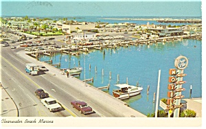 Clearwater Beach FL Pelicans Marina Postcard p10781 1969 (Image1)