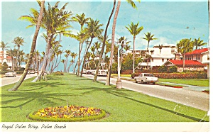 Palm Beach FL Royal Palm Way Cars 50s Postcard p10786 1968 (Image1)
