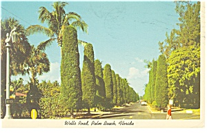 Palm Beach Fl Wells Road Postcard P10791 1966