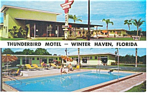 Winter Haven Fl Thunderbird Motel Postcard P10807