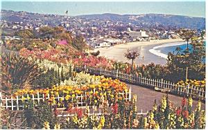 Laguna Beach California Postcard p10939 1965 (Image1)