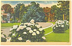 Rehoboth Beach , DE, Silver Lake Drive Postcard (Image1)