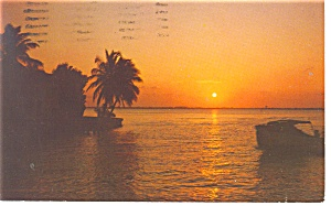 Beautiful Florida Sunset Postcard p11133 1973 (Image1)