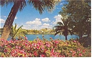 St Petersburg FL Mirror Lake Azaleas Postcard p11138 (Image1)