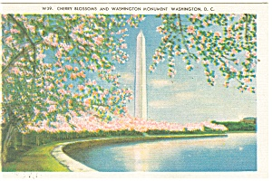 Washington DC Washington Monument Postcard 1945 (Image1)