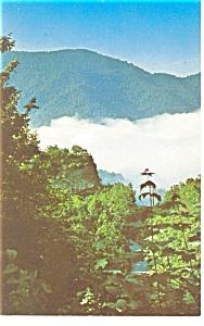 Cumberland, KY Morning Fog Postcard (Image1)