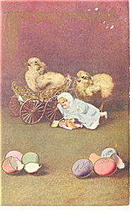 Chicks and Eggs Strange Postcard 1910 (Image1)