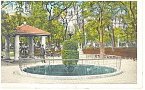 St Petersburg FL Williams Park Fountains Postcard p11317 (Image1)
