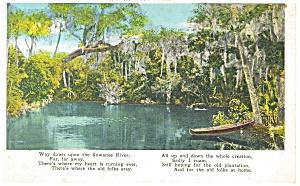 Suwanee River Florida Postcard p11323 (Image1)