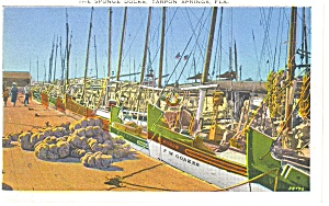 Tarpon Springs Fl The Sponge Docks Postcard P11324