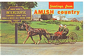 Intercourse, PA, Amish Buggy Postcard (Image1)