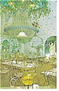 Clearwater  FL  Kapok Tree Chandelier Room Postcard p11544 (Image1)