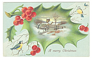 Christmas Postcard Holly ,Berries, Birds (Image1)