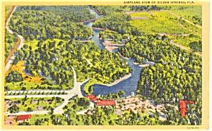 Silver Springs Florida  Postcard (Image1)
