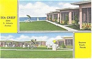 Daytona Beach Fl Sea Crest Motel Postcard P11724
