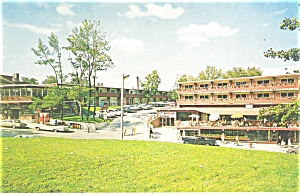 Honeymoon Motel Clifton Hill Ontario Postcard P11727 Cars 50