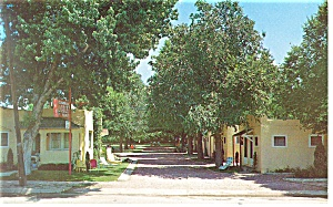 Glendale Lodge Colorado Springs CO Postcard p11731 (Image1)