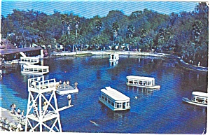 Silver Springs Boats Florida   Postcard (Image1)