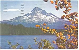 Mt Hood Oregon Postcard p11833 1956 (Image1)