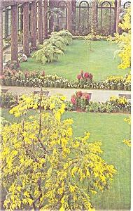 Longwood Gardens Kennett SQ PA Postcard p11913 (Image1)