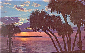 A Southern Night-scenic Postcard P11947