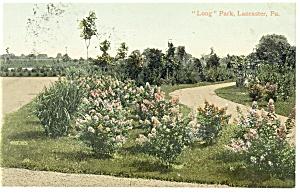 Lancaster PA Long Park Postcard p12095 1909 (Image1)