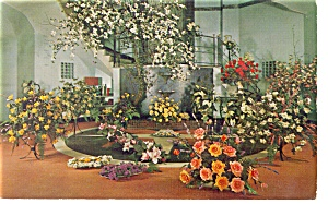 CA Artifical Flowers Providence RI Postcard p12138 (Image1)