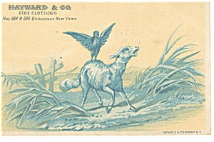 Hayward Co., Clothing Trade Card