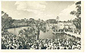 Tarpon Springs Fl Cross Day Postcard P12238