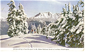 Mt Baker National Forest, WA Postcard 1945 (Image1)