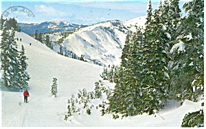 Olympic National Park,WA Ski Area Postcard (Image1)