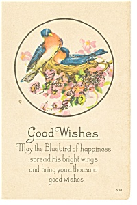 Good Wishes Bluebirds Postcard P12363