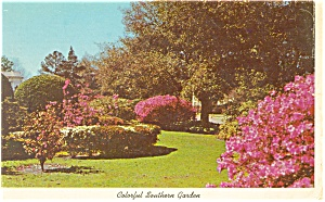 Colorful Southern Garden Postcard P12442 1969