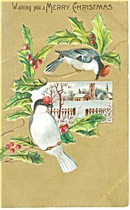 Christmas Postcard Birds and Holly Berries p12494 1908 (Image1)